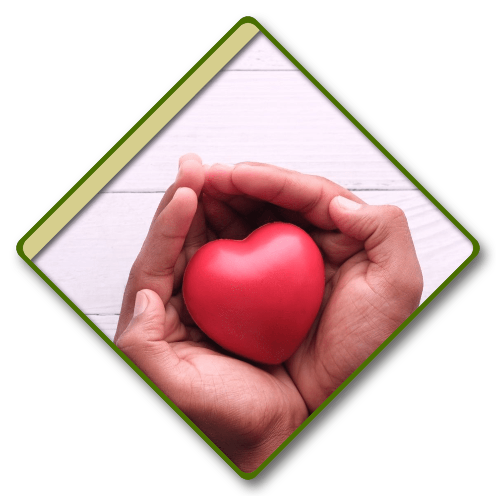 two hands holding a red plastic heart
